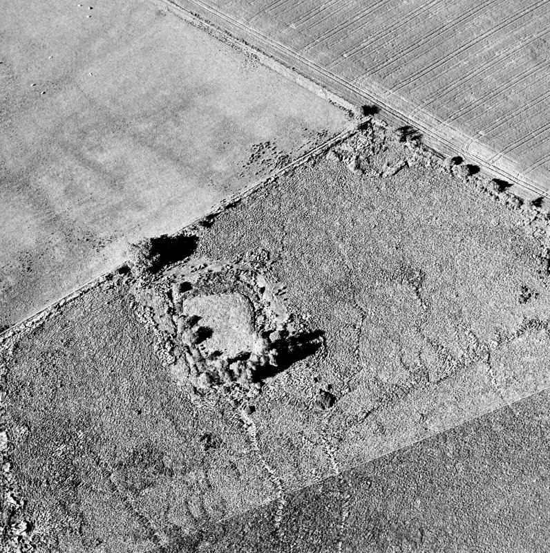 Oblique aerial view centred on the homestead moat, taken from the SSW.