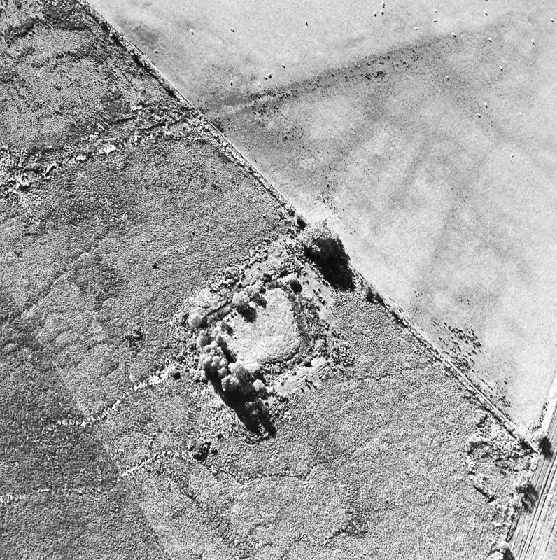 Oblique aerial view centred on the homestead moat, taken from the ESE.