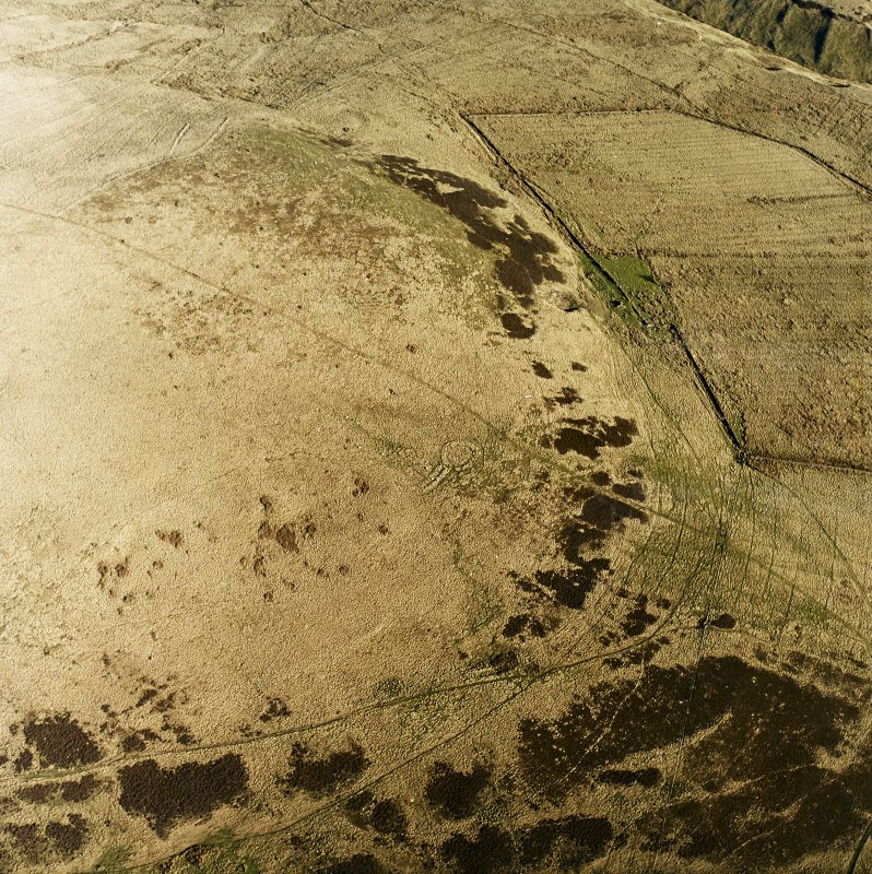 Oblique view of sheepfold, sheephouse, unenclosed platform settlement, rig, farmstead and enclosed fields, taken from W.