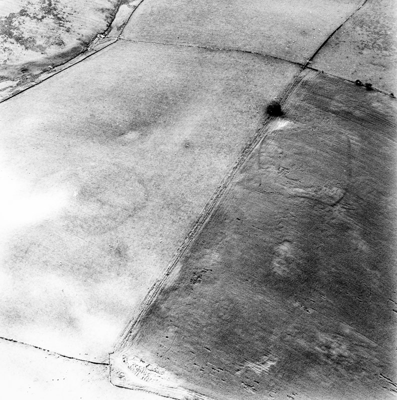 Huntly Burn, oblique aerial view, taken from the NE, centred on the cropmarks of a possible settlement. The cropmarks of a second settlement and rig are visible in the left centre of the photograph.