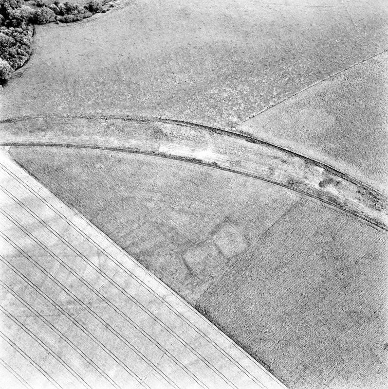 Caddonlee, oblique aerial view, taken from the NW, centred on the cropmarks of an enclosure.