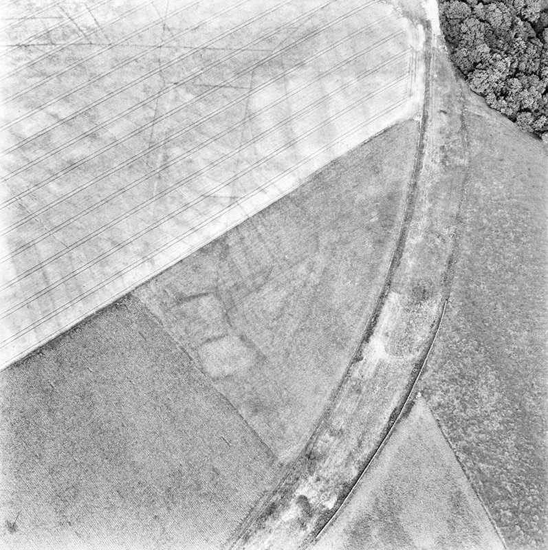 Caddonlee, oblique aerial view, taken from the SW, centred on the cropmarks of an enclosure.