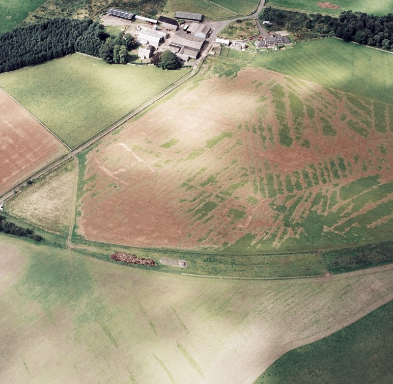 Oblique aerial view of Caddonlee centred on the cropmarks of two enclosures with the village adjacent, taken from the SE.