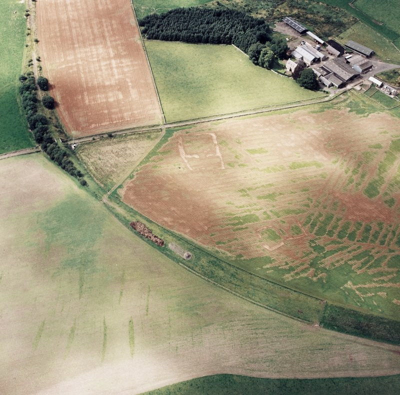 Oblique aerial view of Caddonlee centred on the cropmarks of two enclosures, taken from the E.
