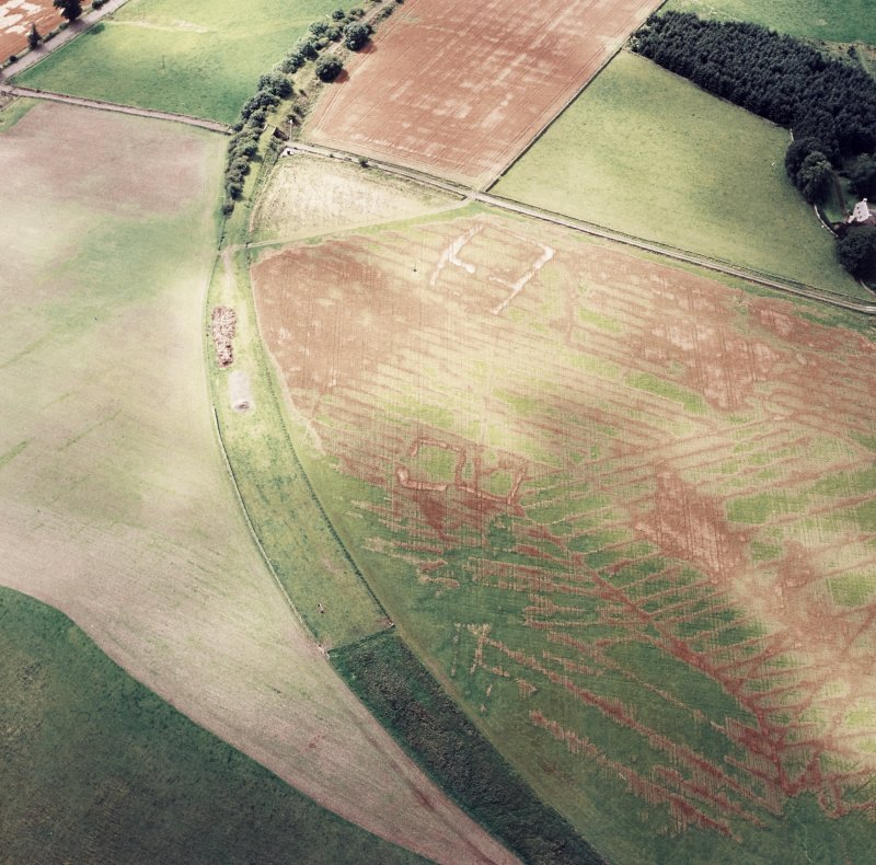 Oblique aerial view of Caddonlee centred on the cropmarks of two enclosures, taken from the NE.