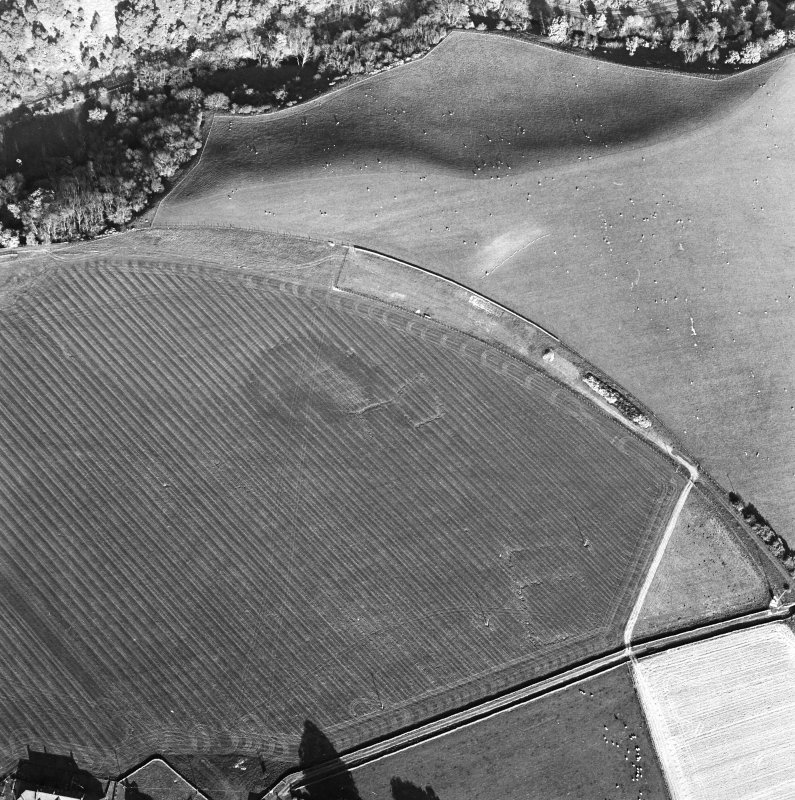 Oblique aerial view centred on the cropmarks of the enclosure with the enclosure adjacent, taken from the NW.