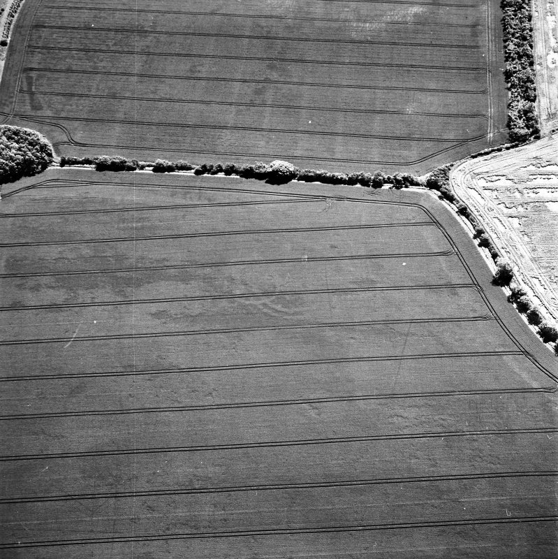 Ballencrieff Mains, oblique aerial view, taken from the NNW, centred on cropmarks including an enclosure, settlement and linear cropmark. The remains of the Gullane Branch Line railway are visible in the top left-hand corner of the photograph.