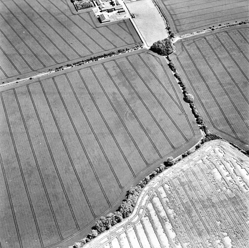 Ballencrieff Mains, oblique aerial view, taken from the WSW, centred on cropmarks including an enclosure, settlement and linear cropmark. The remains of the Gullane Branch Line railway are visible in the top half of the photograph.