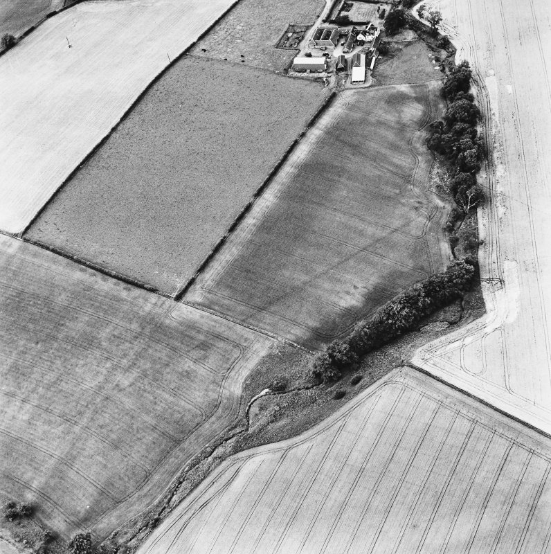 Milrighall, oblique aerial view, taken from the SE, centred on cropmarks of a Roman Camp.