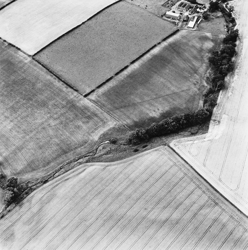 Milrighall, oblique aerial view taken from the E, centred on the cropmarks of a roman camp.