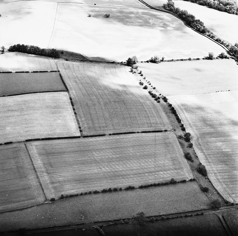 Milrighall, oblique aerial view taken from the SW, centred on th cropmarks of a Roman Temporary Camp.
