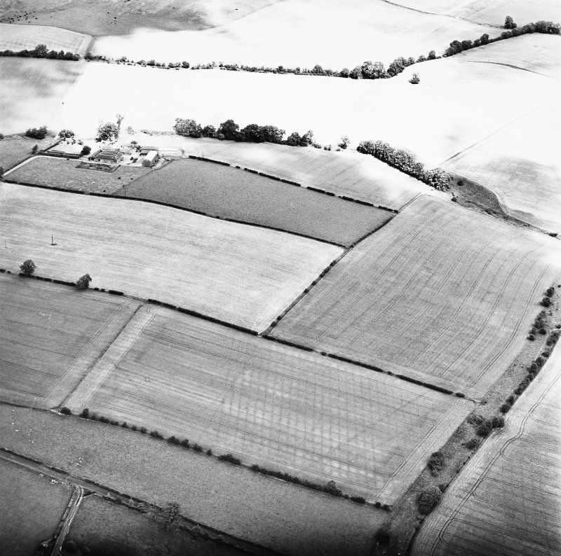 Milrighall, oblique aerial view taken from the SW, centred on the cropmarks of a Roman Temporary Camp.