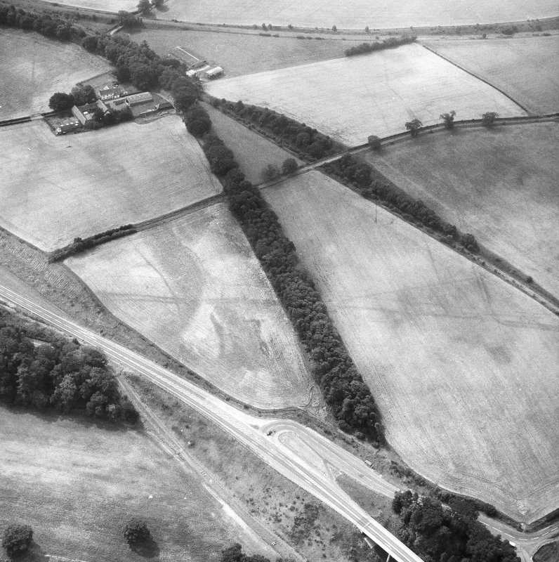 Newstead, Roman fort and temporary camps: air photograph showing Eastern annexe (NT 572 343), and 'Great camp' complex of temporary camps (NT 574 341). Also shows pit-alignment and linear feature (NT 576 343 to NT 577 339) at Broomhill