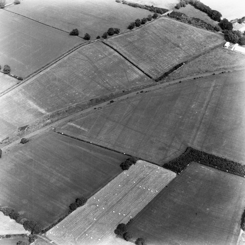 Newstead, Roman forts and temporary camps: RCAHMS air photograph showing southern annexe (NT 569 341), eastern annexe (NT 572 343), 'Great camp' complex (NT 574 341), 40-acre temporary camp (NT 570 337) and 160-acre temporary camp (NT 567 337)