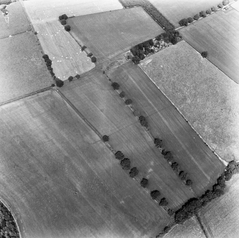 Newstead, Roman forts and temporary camps: RCAHMS air photograph showing enclosure (NT 5691 3369), rectilinear enclosure (NT 5675 3361) and 40-acre temporary camp (NT 570 337)