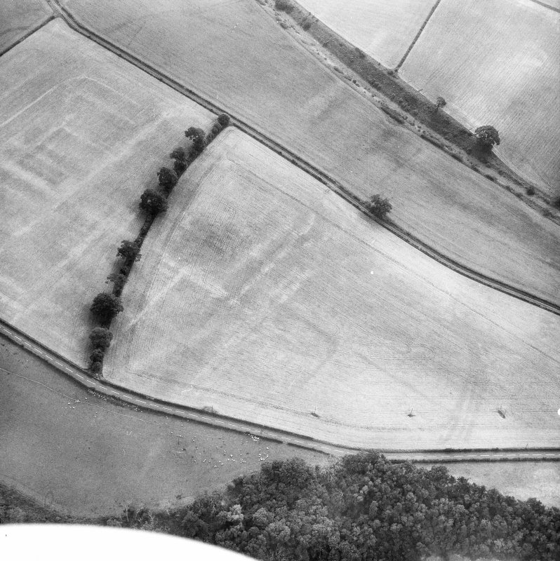 Newstead, Roman fort and temporary camps: air photograph showing fort (NT 569 344), Western annexe (NT 567 343) and annexe (NT 571 343).