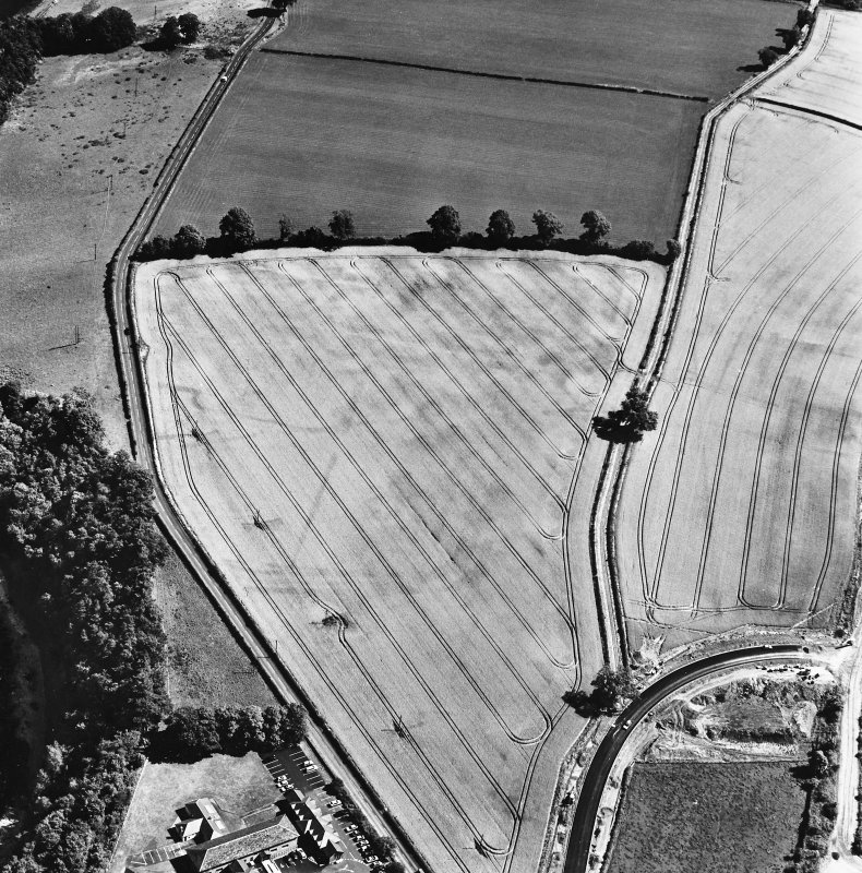 Newstead, oblique aerial view, taken from the W, centred on the Roman fort and the western and southern annexes.