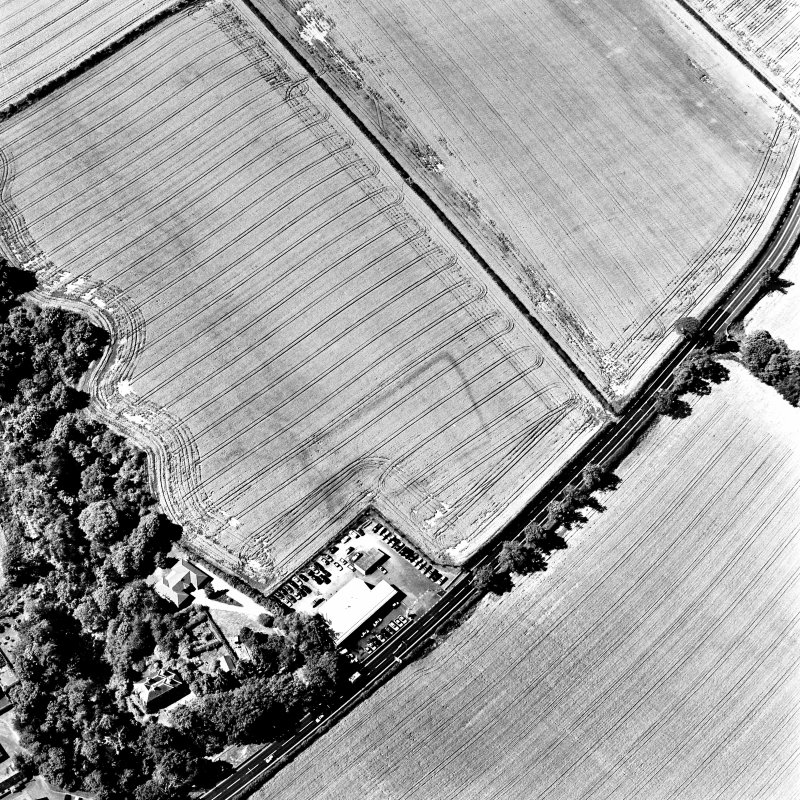 Hawthorndene, oblique aerial view, taken from the ENE, centred on the cropmarks of a rectilinear settlement.