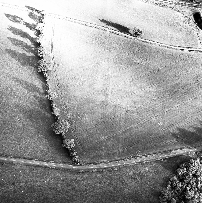Newstead Roman fort and western annexe, oblique aerial view, taken from the N.