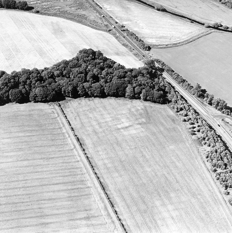 Oblique aerial view of St Leonard's Hill centred on the cropmarks of an enclosed settlement and rig, taken from the SSE.