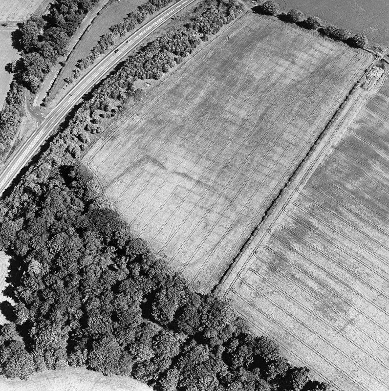 Oblique aerial view of St Leonard's Hill centred on the cropmarks of an enclosed settlement and rig, taken from the WNW.