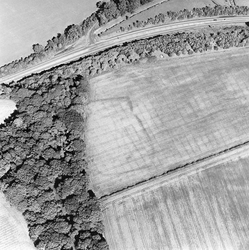 Oblique aerial view of St Leonard's Hill centred on the cropmarks of an enclosed settlement and rig, taken from the WSW.