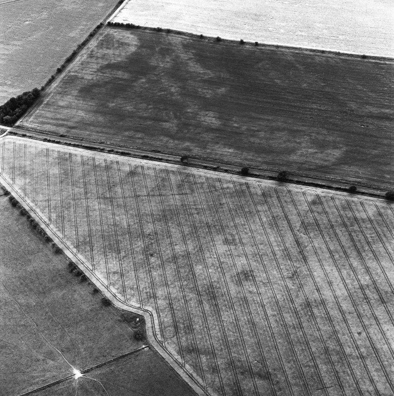 St. Leonard's Hill Roman Temporary Camp, oblique aerial view, taken from the ENE, centred on the cropmark of part of the SW side of the camp.