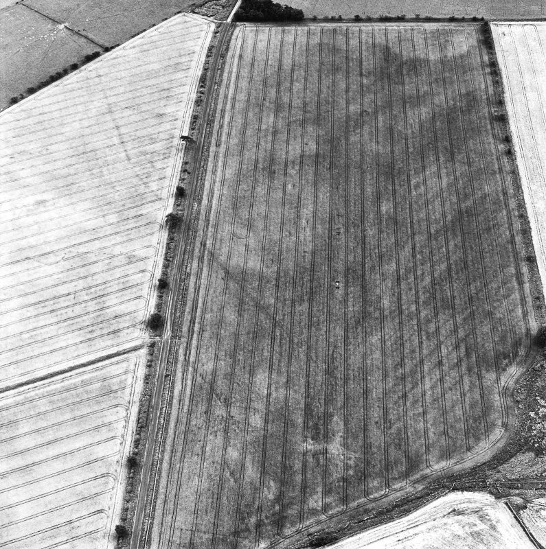 St. Leonard's Hill Roman Temporary Camp, oblique aerial view, taken from the N, showing the cropmark of part of the SW side of the camp running diagonally across the photograph.