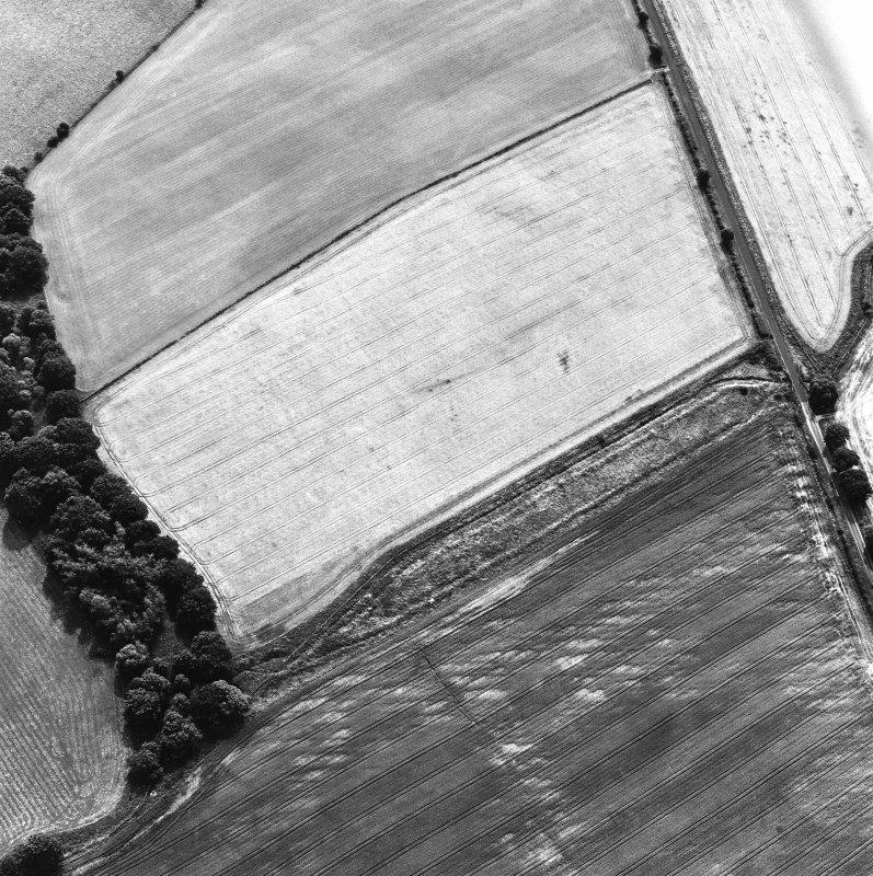 Oblique aerial view centred on the cropmarks of the Roman temporary camp, taken from the N.