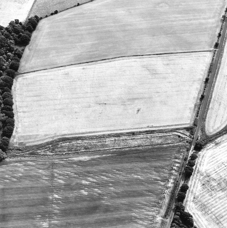 Oblique aerial view centred on the cropmarks of the Roman temporary camp, taken from the NW.