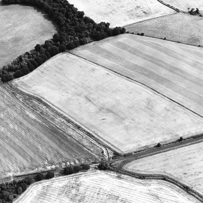 Oblique aerial view centred on the cropmarks of the Roman temporary camp, taken from the W.