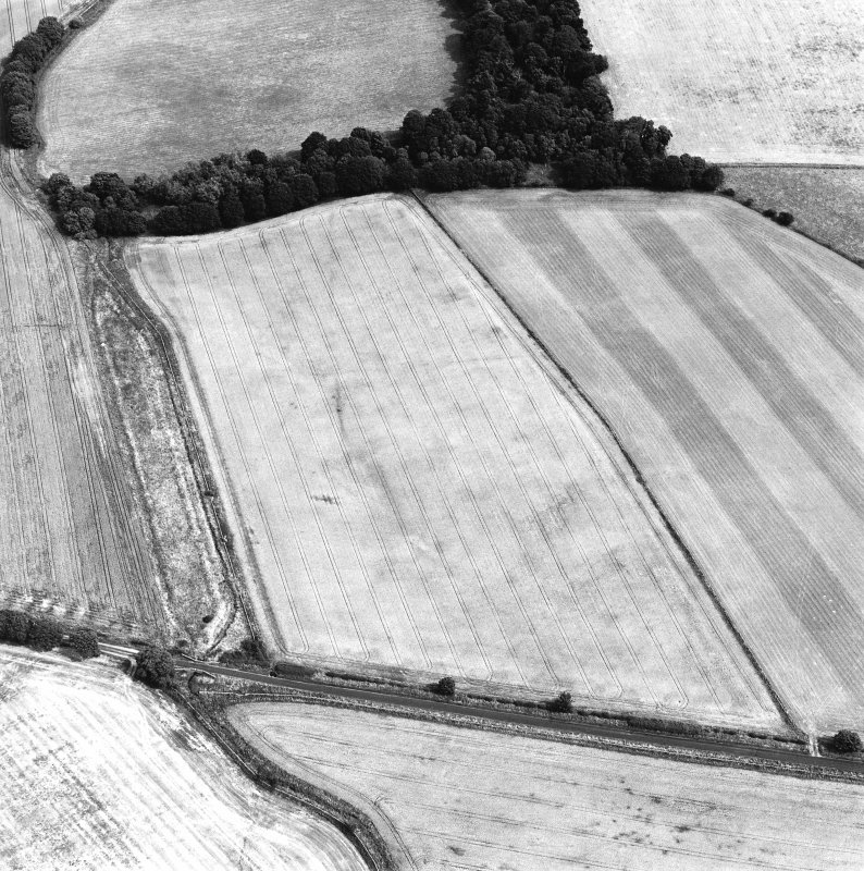 Oblique aerial view centred on the cropmarks of the Roman temporary camp, taken from the WSW.