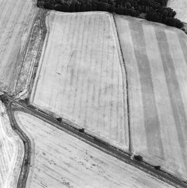 Oblique aerial view centred on the cropmarks of the Roman temporary camp, taken from the SW.