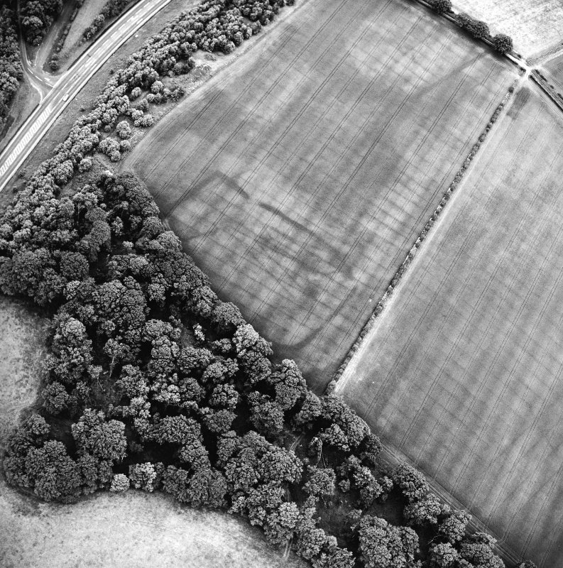 Oblique aerial view centred on the cropmarks of the settlement with enclosure, linear cropmarks and Roman temporary camp adjacent, taken from the WNW.