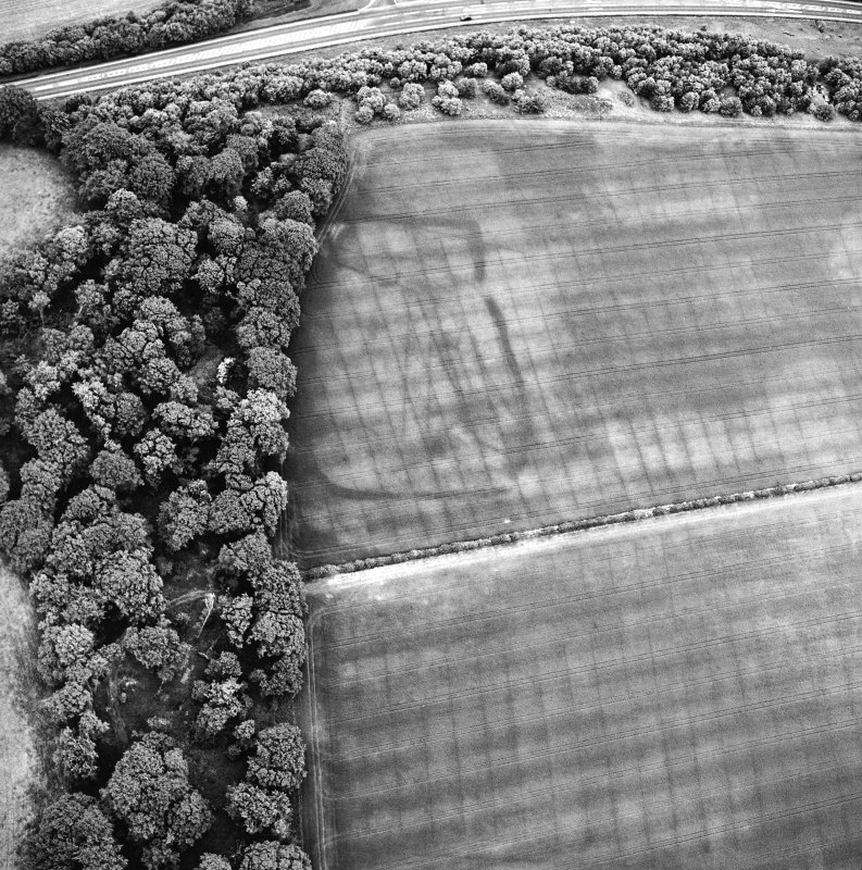 Oblique aerial view centred on the cropmarks of the settlement, taken from the SW.