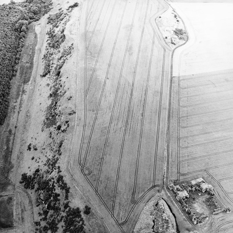 Oblique aerial view centred on the cropmarks of the forts and the remains of the towerhouse, taken from the WSW.
