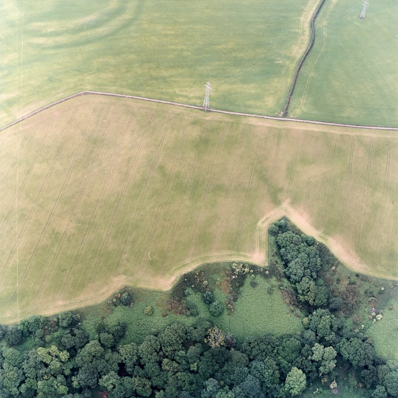 Oblique aerial view centred on the cropmarks of the field boundaries and cropmarks with fort adjacent, taken from the SW.