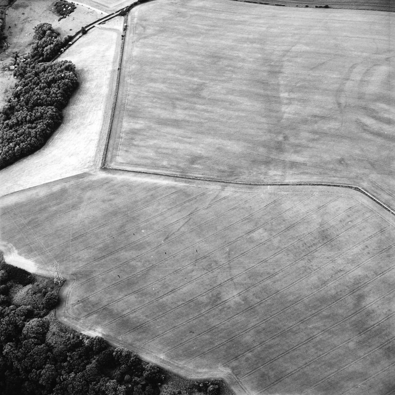 Oblique aerial view centred on the cropmarks of the field boundaries and cropmarks with fort adjacent, taken from the SSW.