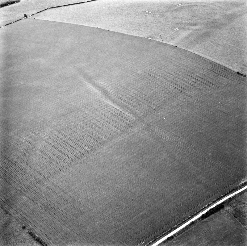 The Chesters, Spott and Spott Dod, linear cropmark: oblique air photograph of cropmarks