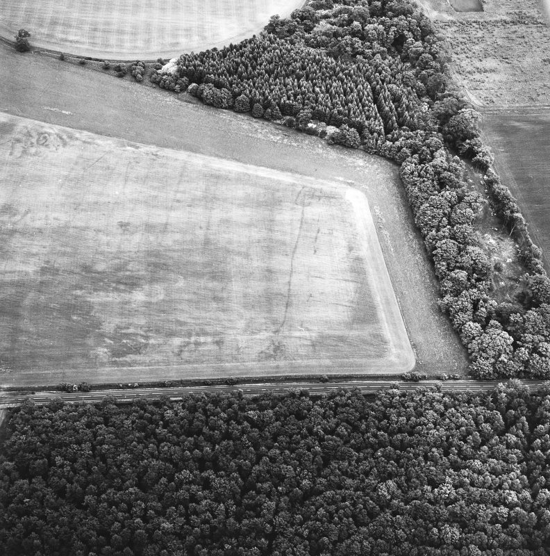 Whitekirk, oblique aerial view, taken from the WSW, centred on cropmarks of a settlement. Further cropmarks are visible in the centre left of the photograph.