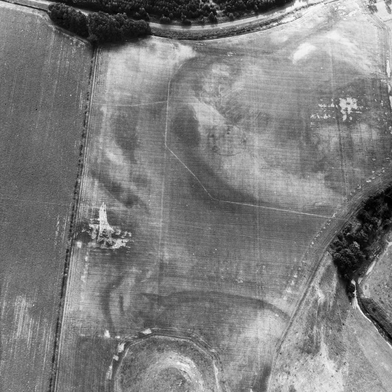 Oblique aerial view centred on plantation bank from NNW.