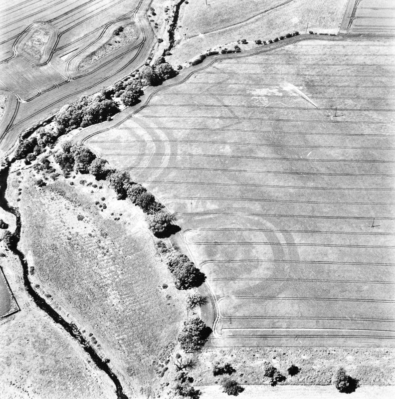 Aytonlaw, oblique aerial view taken from the SE, centred on the cropmarks of a palisaded enclosure, a fort and possible souterrain.  A second cropmark of a fort lies to the immediate W.  A linear cropmark is also visible in the top centre of the photograph.