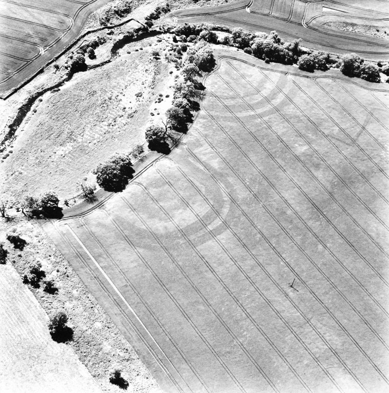 Aytonlaw, oblique aerial view taken from the NE, centred on the cropmarks of a palisaded enclosure, a fort and possible souterrain.  A second cropmark of a fort is visible to the immediate W.  A linear cropmark is also visible in the top right hand corner of the photograph.