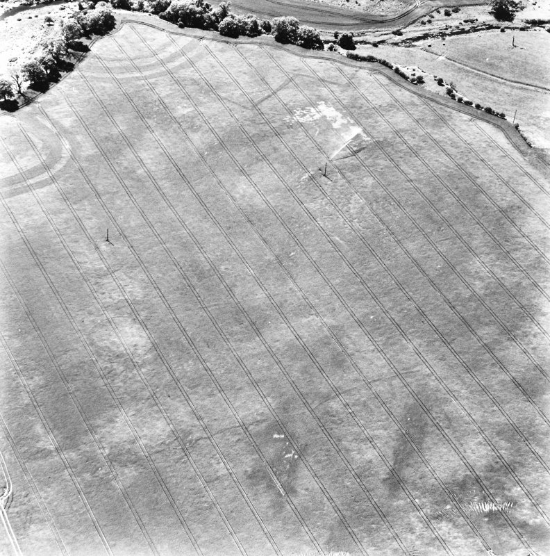 Aytonlaw, oblique aerial view taken from the NW, centred on the cropmarks of a palisaded enclosure, a fort and possible souterrain.  A second cropmark of a fort lies to the immediate W.  A linear cropmark is also visible in the top centre of the photograph.  In the left hand centre of the photograph the cropmark of a second palisaded enclosure can be seen.