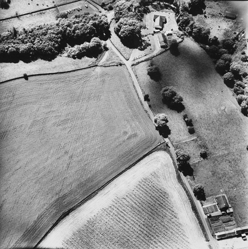 Craigenholly, oblique aerial view, taken from the NE, centred on the cropmarks of a round house and possible souterrain.