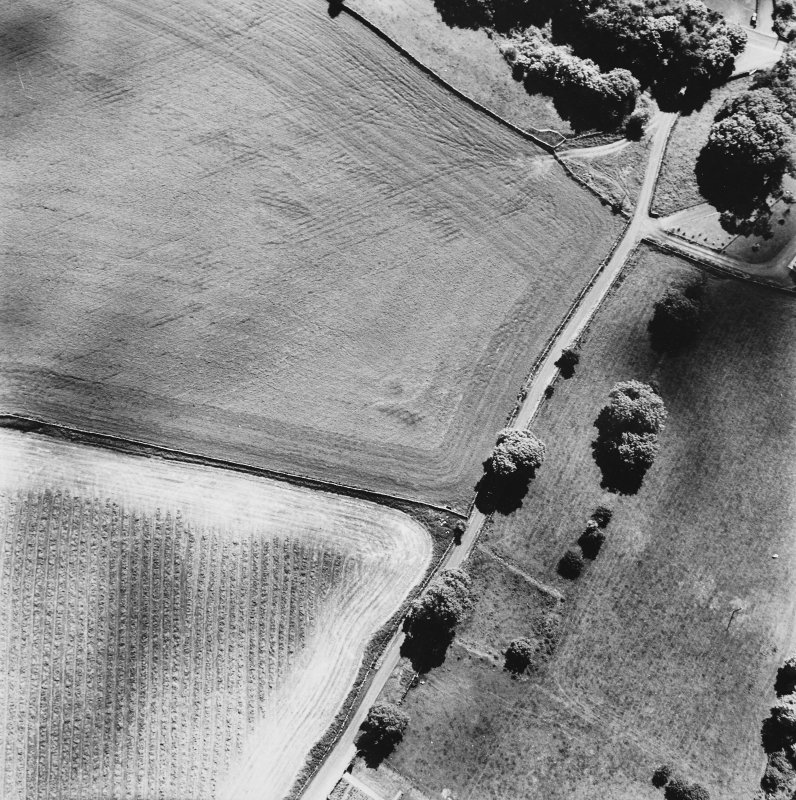 Craigenholly, oblique aerial view, taken from the N, centred on the cropmarks of a round house and possible souterrain.