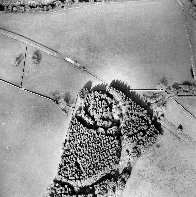 Oblique aerial view centred on the remains of the earthwork, taken from the SW.