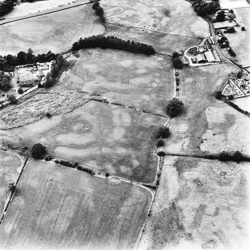 Dalawoodie and Holywood Abbey, oblique aerial view, taken from the SE, centred on the cropmarks to the SE of the Abbey, showing a rectilinear enclosure and linear cropmarks.