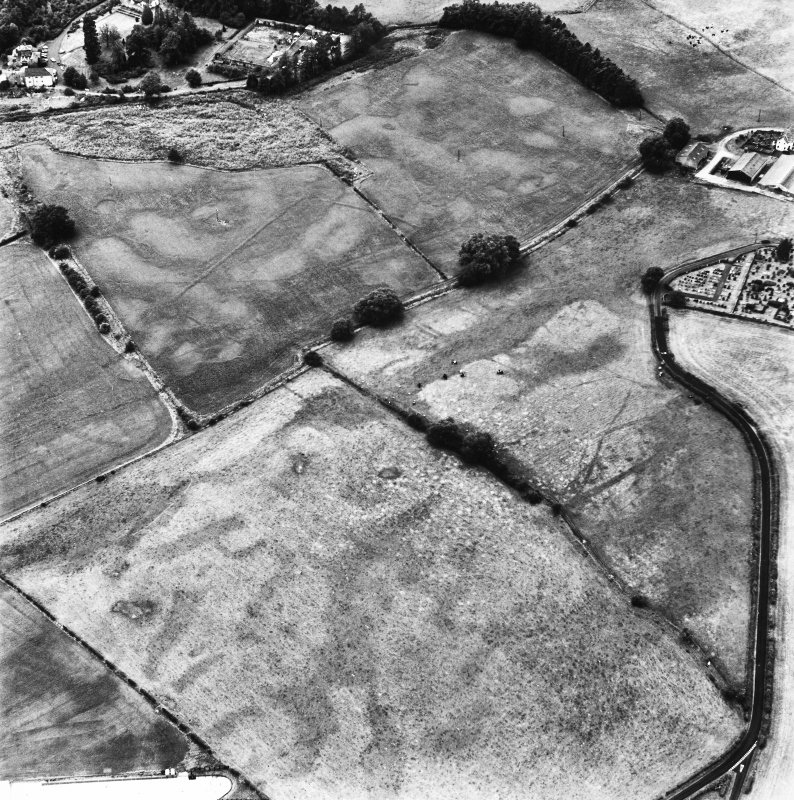 Dalawoodie and Holywood Abbey, oblique aerial view, taken from the ENE, centred on the cropmarks to the SE of the Abbey, showing a rectilinear enclosure and linear cropmarks.