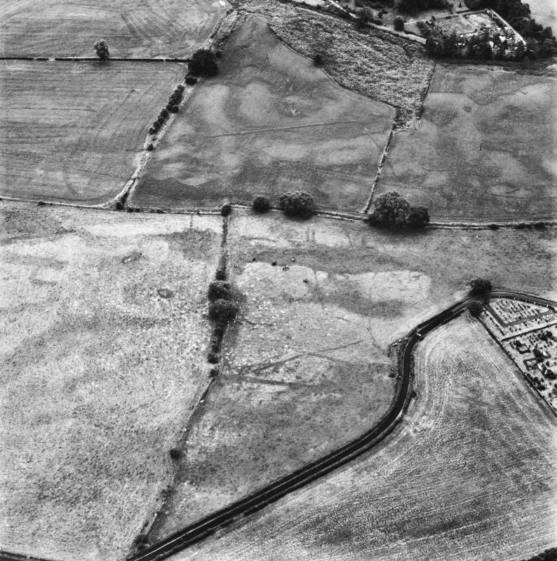 Dalawoodie and Holywood Abbey, oblique aerial view, taken from the NE, centred on the cropmarks to the SE of the Abbey, showing a rectilinear enclosure and linear cropmarks.